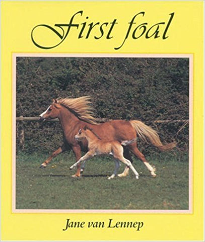 First Foal by Jane van Lennep