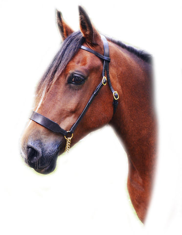 English Leather In Hand Bitless Show Bridle Wide Noseband