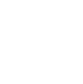 Cruise Customs Logo