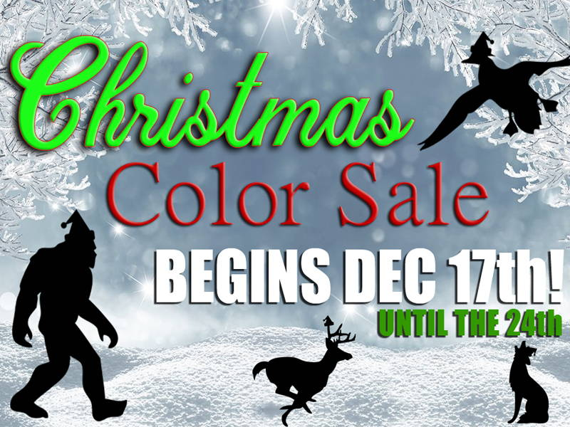Christmas Color Sale Gift Guide