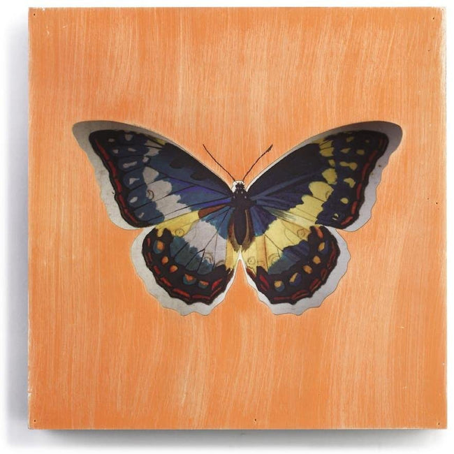 DEMDACO Butterfly Box Plaque