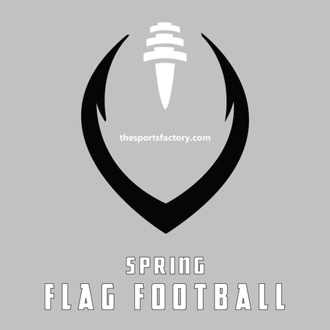 2020 Indoor Flag Football League