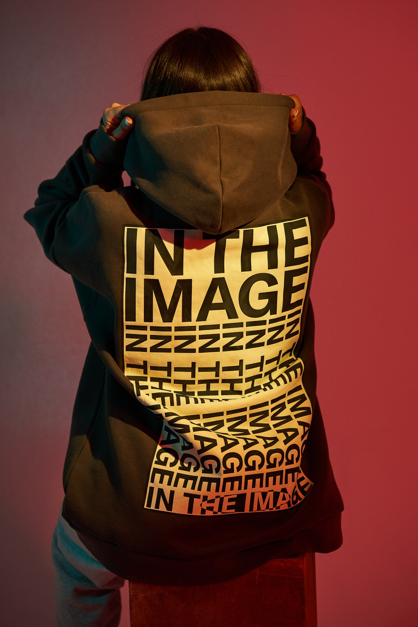 In the Image Hoodie