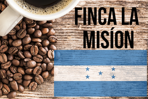 First Irving - Finca La Mision