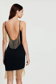 Sarah Open Back Fringe Bodycon Dress - DIOR BELLA