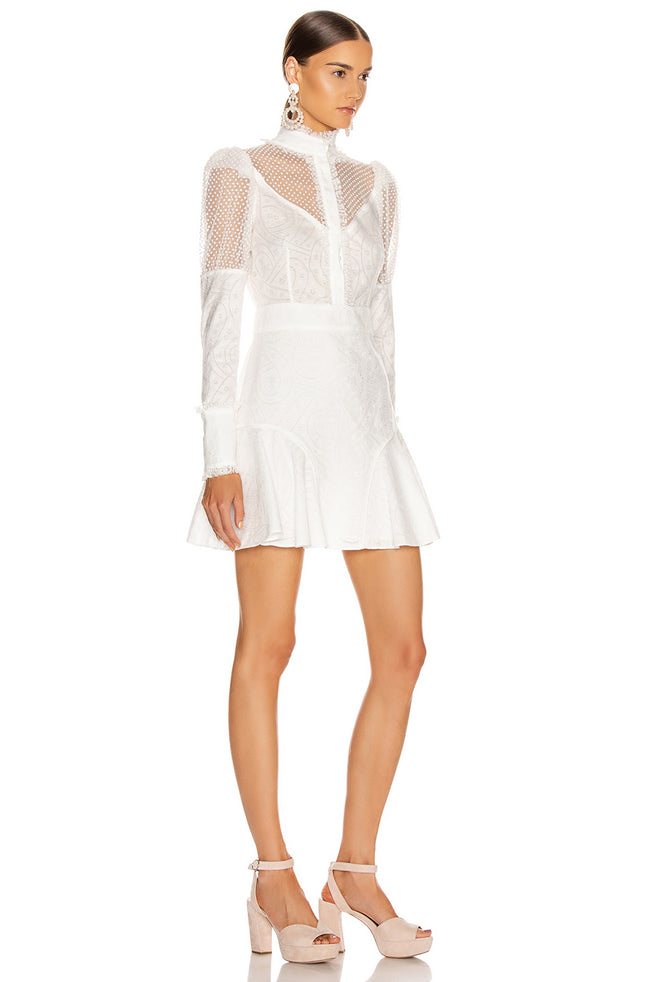Jacared Mesh Long Sleeve Mini Dress