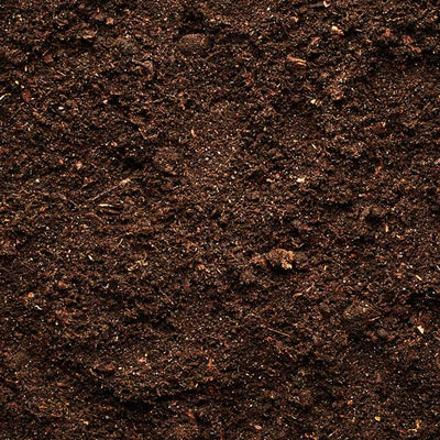Living Soil and Super Soil:  What's the Difference?
