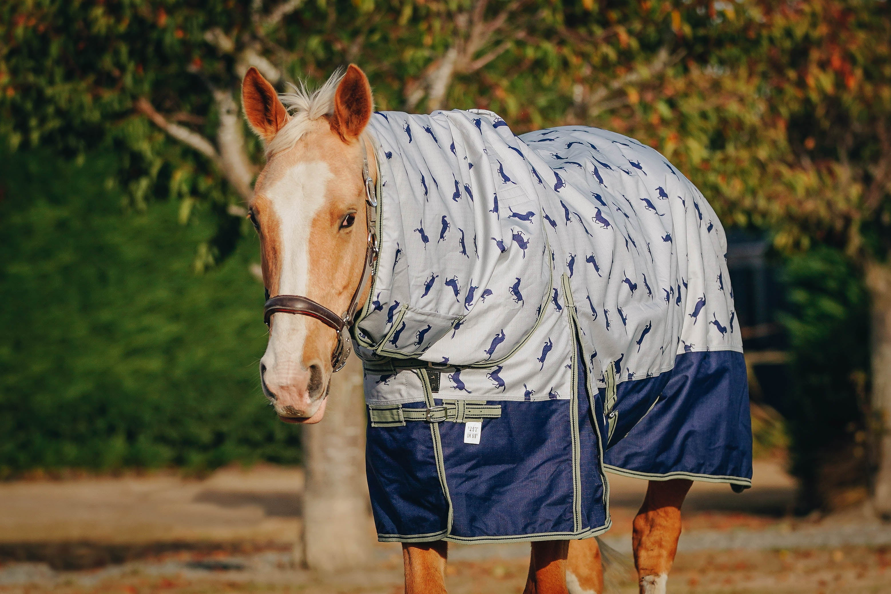 1200D 100g Horse Print Detachable