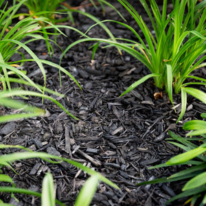 Black Decorative Mulch is saving your garden and Auckland's landfill!