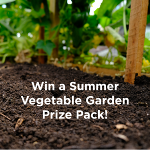 Win a Summer Vegetable Garden Prize Pack