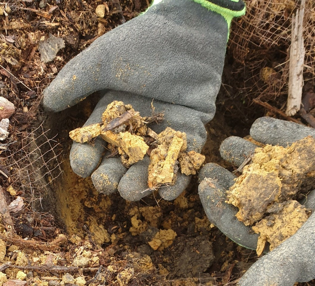 Dealing with clay soils and conditioning them for planting