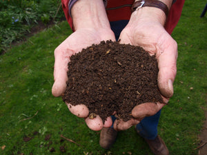 How compost takes your garden to a whole new level