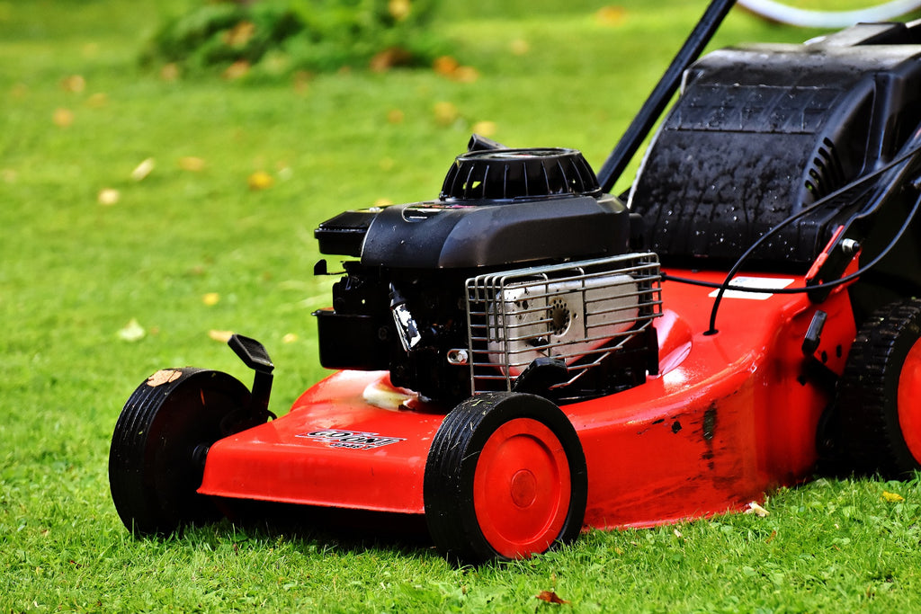 Mowing your lawn correctly