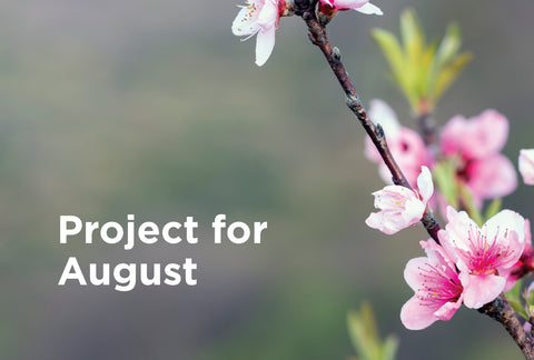 Project for August