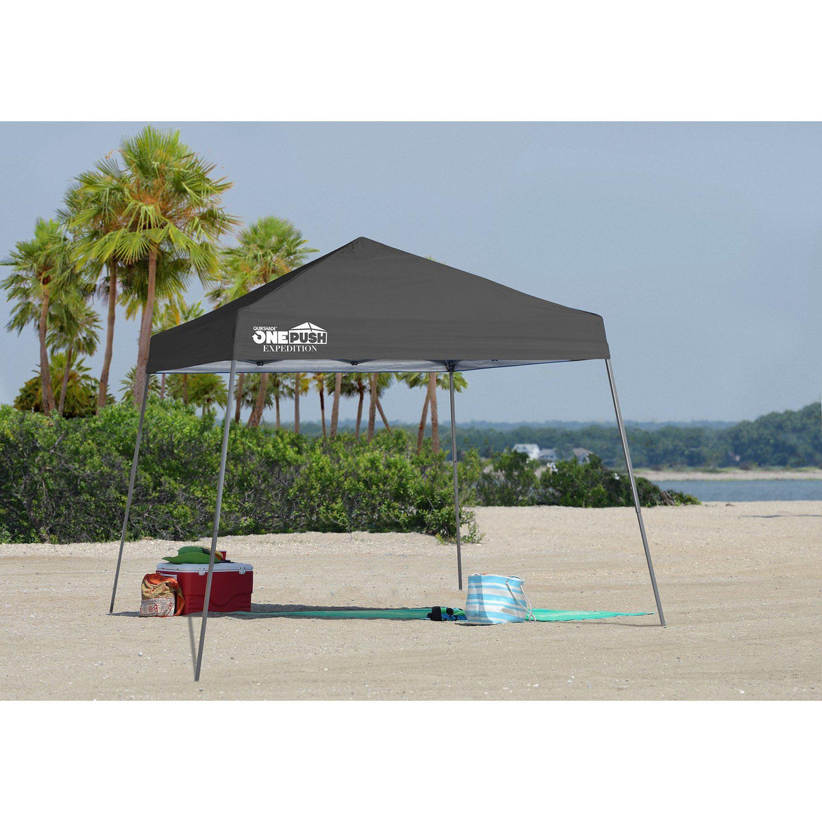 Quik Shade Expedition One Push 10 x 10 ft. Slant Leg Canopy