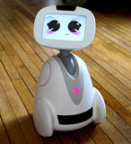 BUDDY - The Companion Robot