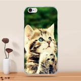 Cute 3D Animal Phone Cases