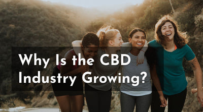 Why Is the CBD Industry Growing?