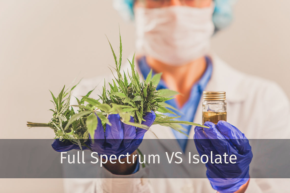 Compare Full Spectrum CBD vs CBD Isolate