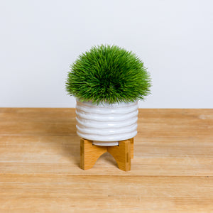 Ribbed Ceramic Planter