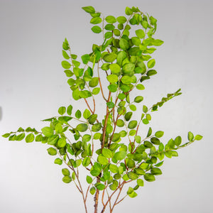 "46"" Boxwood Leaf Branch Light Green"