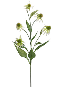 Coneflower Spray Green 34""