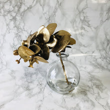 Gold Phalaenopsis Orchid with Glass Vase