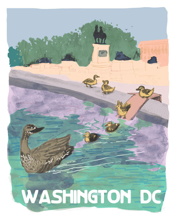 Ducklings at the Capitol Reflective Pool [#70]