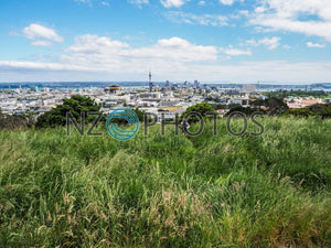 Mount Eden Plateau Stock Photo