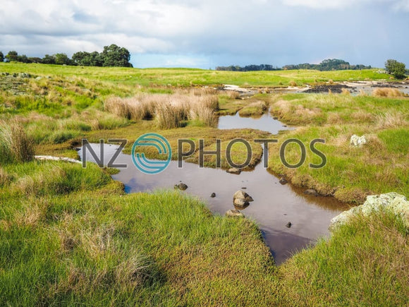 Ambury Regional Park Wetlands Stock Photo