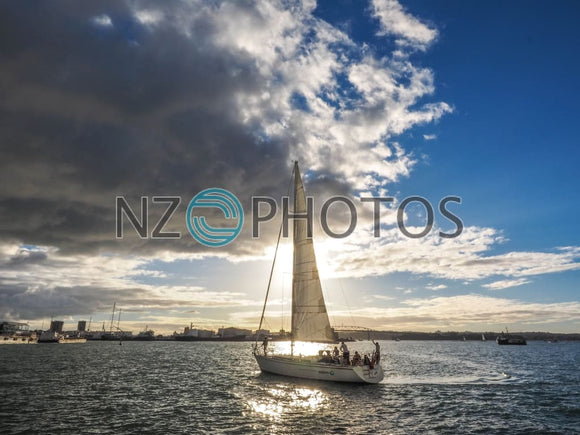 Auckland Harbour Sailing Stock Photo