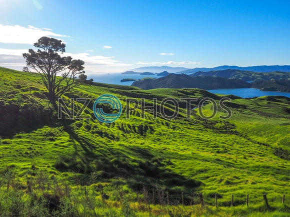 Coromandel Peninsula Coast Stock Photo