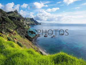Aucklands North Shore Coastline Stock Photo