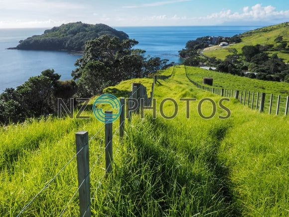 Goat Island Stock Photo