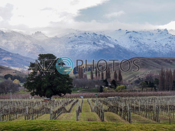 Southern Alps Cromwell Stock Photo