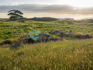 Sunset Over Otuataua Stonefields Stock Photo
