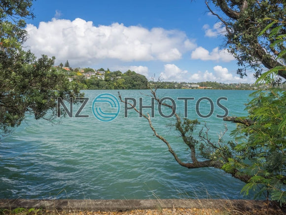 Orakei Waterfront Stock Photo