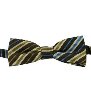ÊBBow313 Boys Pretied Bow Tie Cocoa Brown, Tan and Cornflower Blue StripesÊ