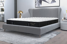 "Dreamstar 13"" Chiro Firm Tight Top Mattress"