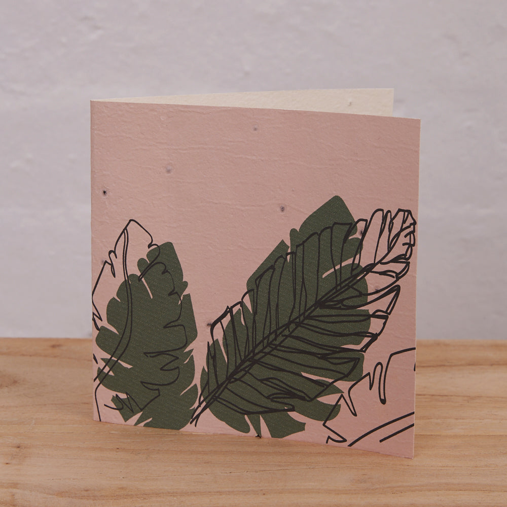 Plantable Cards (Palms)
