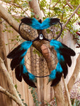 Owl Dreamcatcher Aqua/Black