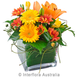 Ginger Wandin Florist Order Online Buy Wedding Flowers Arrangements Asiatic Lillies Orange Roses Gerberas Chrysanthemums Seasonal Foliage Dodda Vine Yarra Valley Lilydale Dandenong Ranges