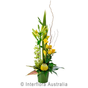 Radiance Wandin Florist Flowers Arrangement Natives Roses Lillies Orchids in a Ceramic Pot Yarra Valley Lilydale
