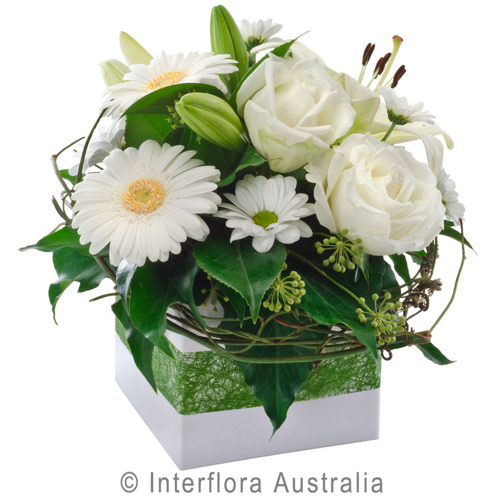 Hope Wandin Florist Petite Wedding Flowers Box Arrangemen White Gerberas Roses Chrysanthemums Yarra Valley Lilydale Dandenong Ranges