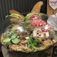 Terrarium Wandin Florist Yarra Valley Lilydale Flowers Arrangement Aquarium