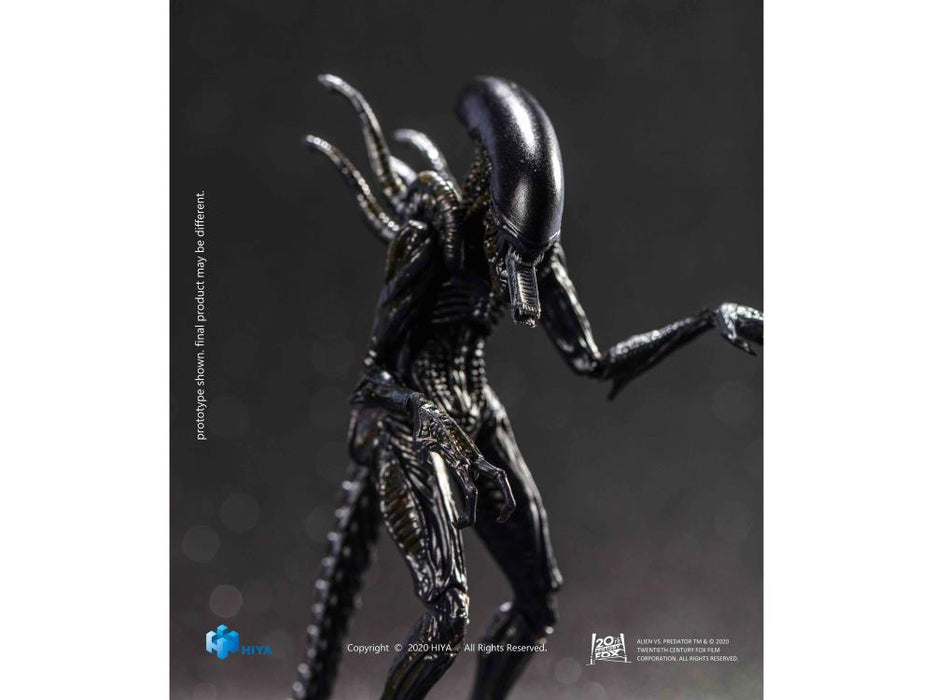 AVP: Alien vs. Predator Alien Warrior 1:18 Scale Action Figure - Previews Exclusive