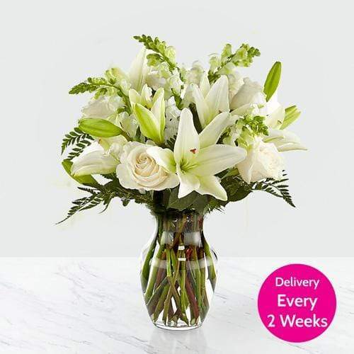 Flowers The White Minimalist Monthly Subscription Box (Fortnightly)