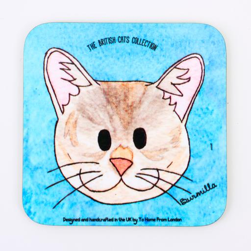 Coaster / Fridge Magnet Cat Burmilla - UK Loves Range