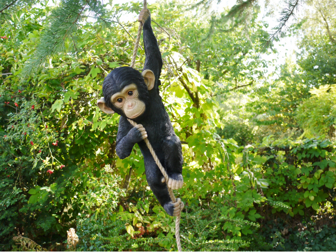 Garden climbing monkey on rope