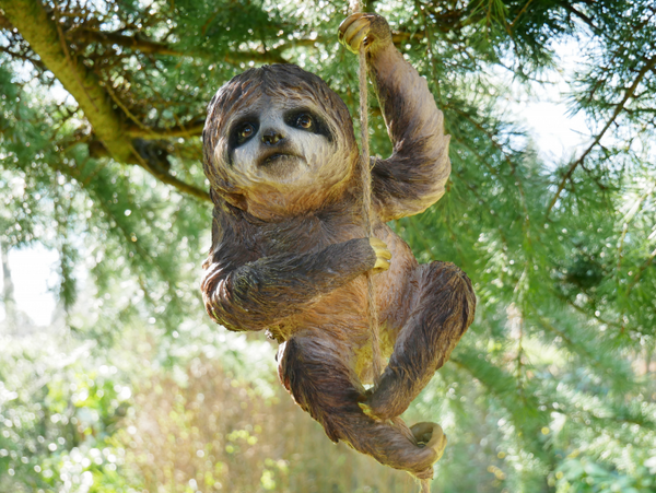 garden sloth on rope